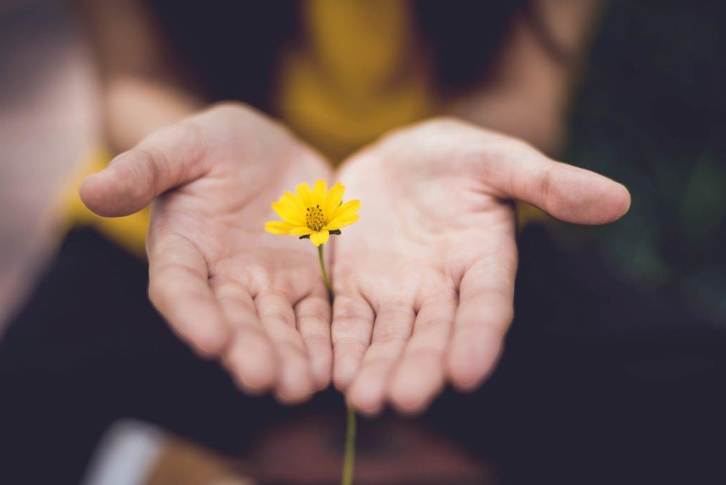 hender blomst